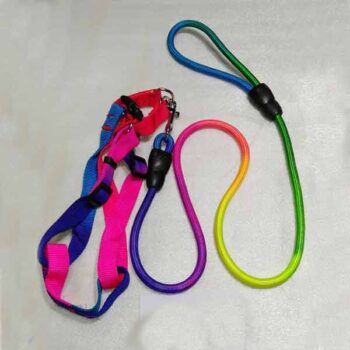5 Feet Multi Color Dog Belt with Chest