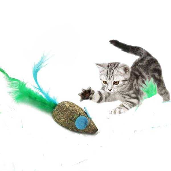 Catnip Toy – Mouse with Feather Interactive Toy