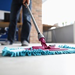 Mops and Mop Accessories